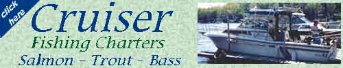 Cruiser Fishing Charters